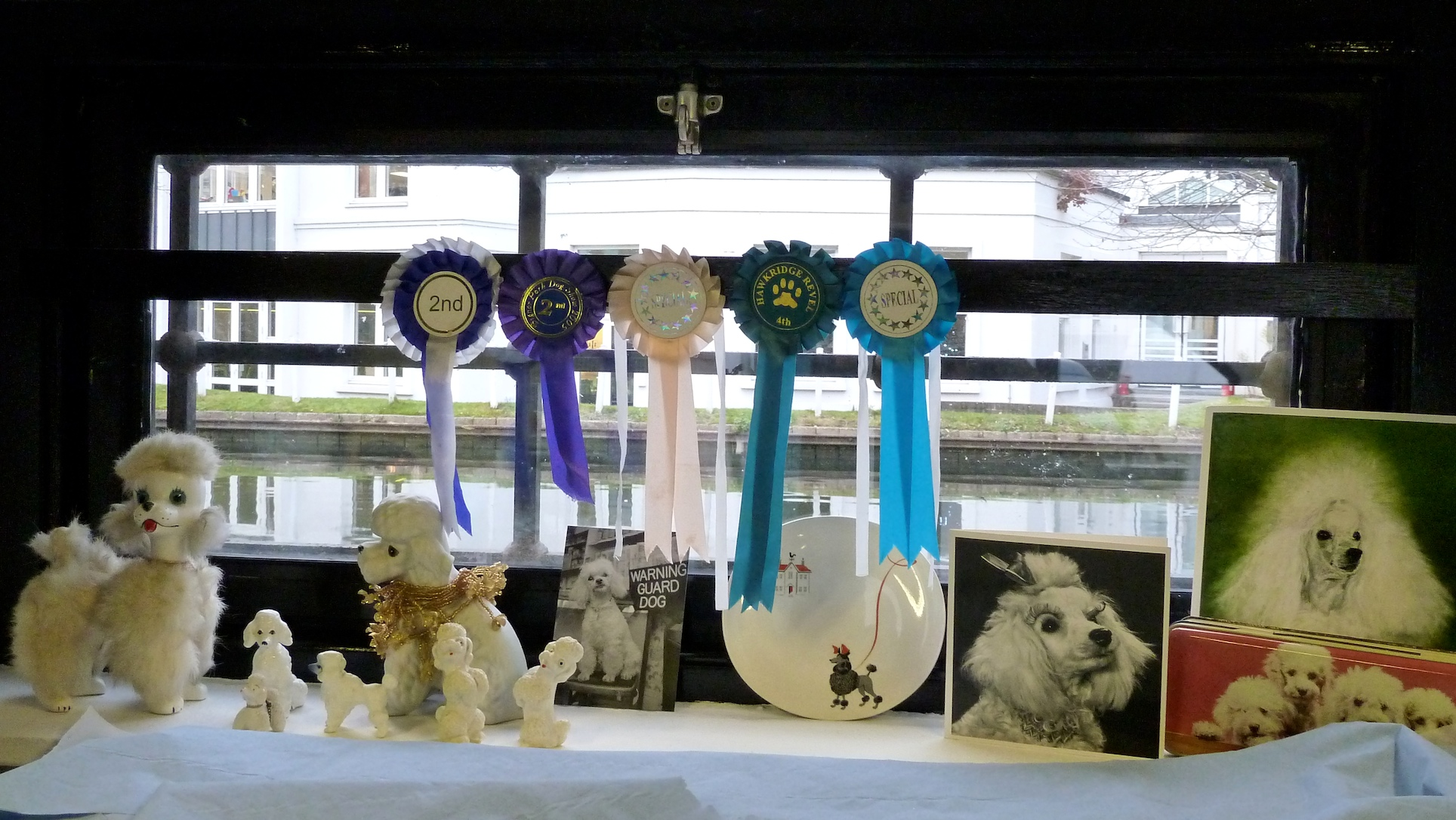 Personal tribute shelf for Tom's adored poodle Molly