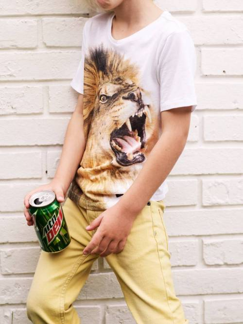 Lions head animal portrait print on Boy's Tee from Finger in The Nose summer 2012