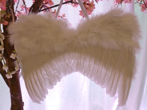 Monsoon fairy wings for girls, in stock in time for Christmas parties for Xmas 2011
