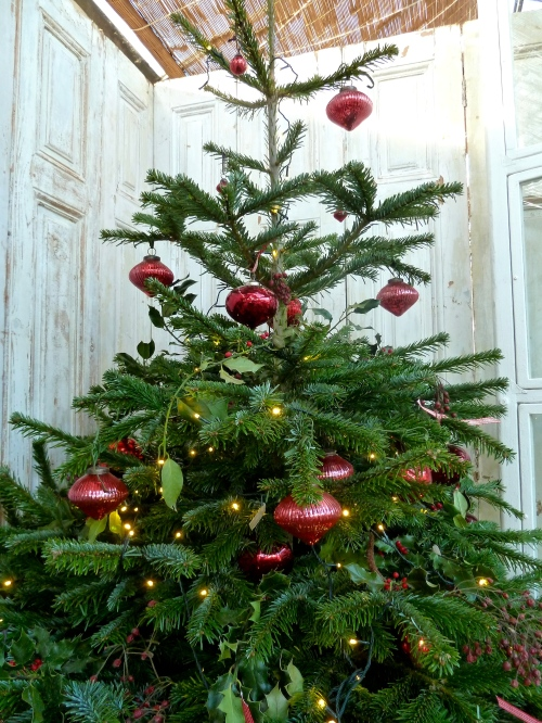 A classic green and red tree, simple and tasteful at Petersham Nurseries for Xmas 2011